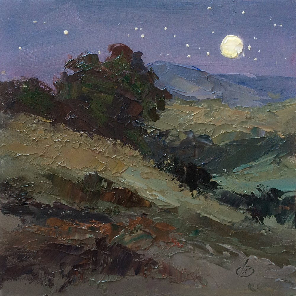 """WILDFLOWERS AT NIGHT"" original fine art by Tom Brown"