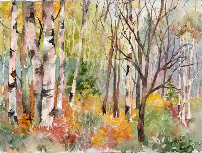 """Fall Woodland with Birches"" original fine art by Sue Dion"