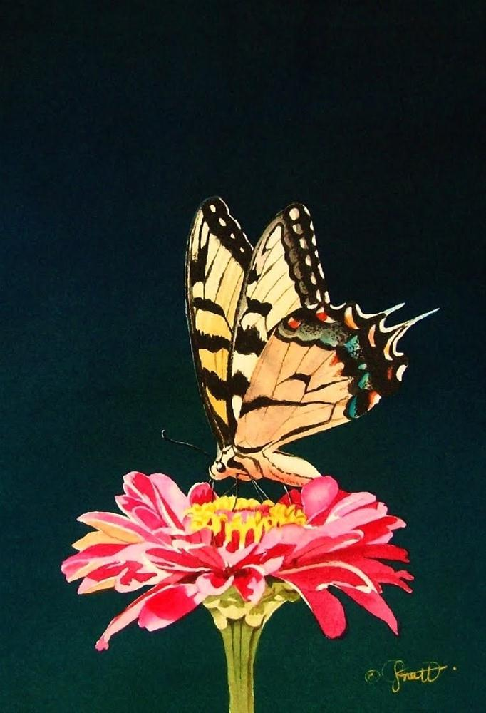 """Butterfly & Friend"" original fine art by Jacqueline Gnott, whs"