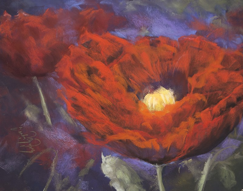 """Poppy Poppy"" original fine art by Sandy Byers"