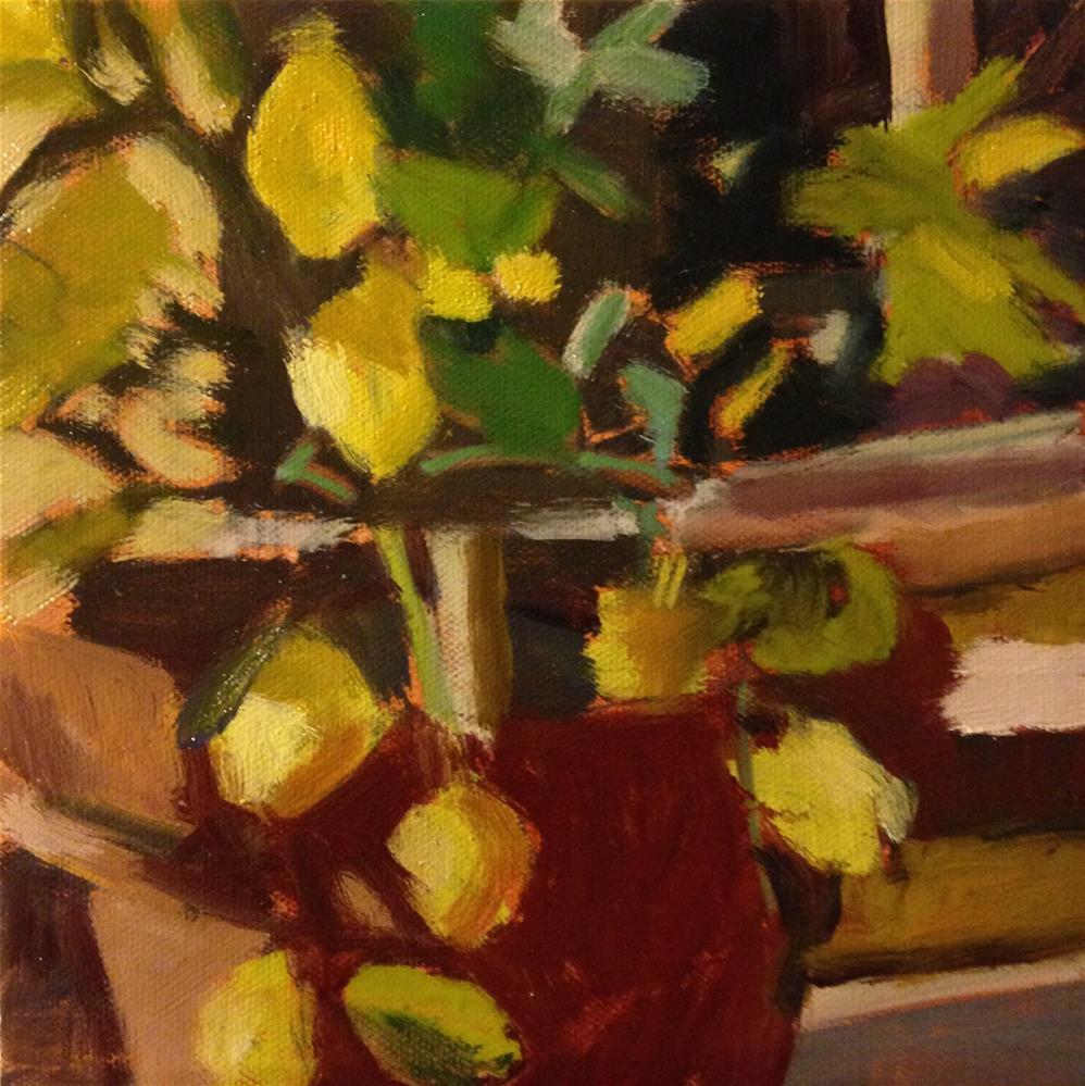 """Potted Lemons"" original fine art by Pamela Hoffmeister"