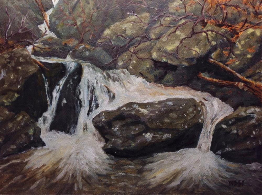 """Rocky Mountain Alpine Stream"" original fine art by James West"