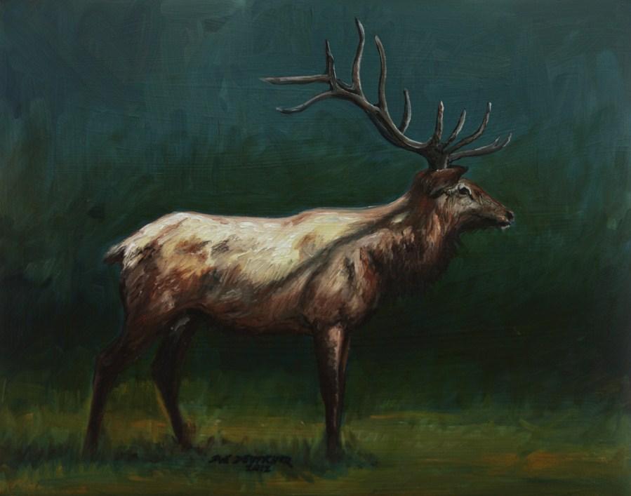 """""""Elk"""" original fine art by Sue Deutscher"""