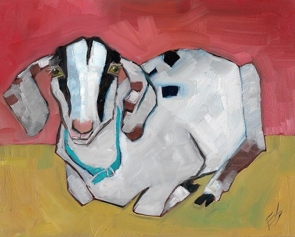 """Goat From The County Fair"" original fine art by Elizabeth See"
