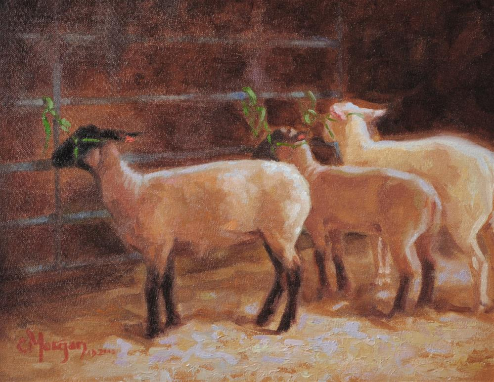 """Lee County 4H Lambs"" original fine art by Cecile W. Morgan"