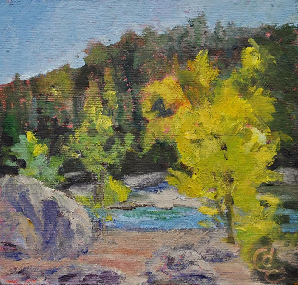 """Quakies and Pines"" original fine art by Catherine Crookston"
