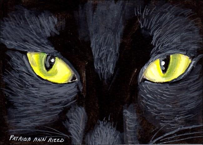 """""""The Black Cat"""" original fine art by Patricia Ann Rizzo"""