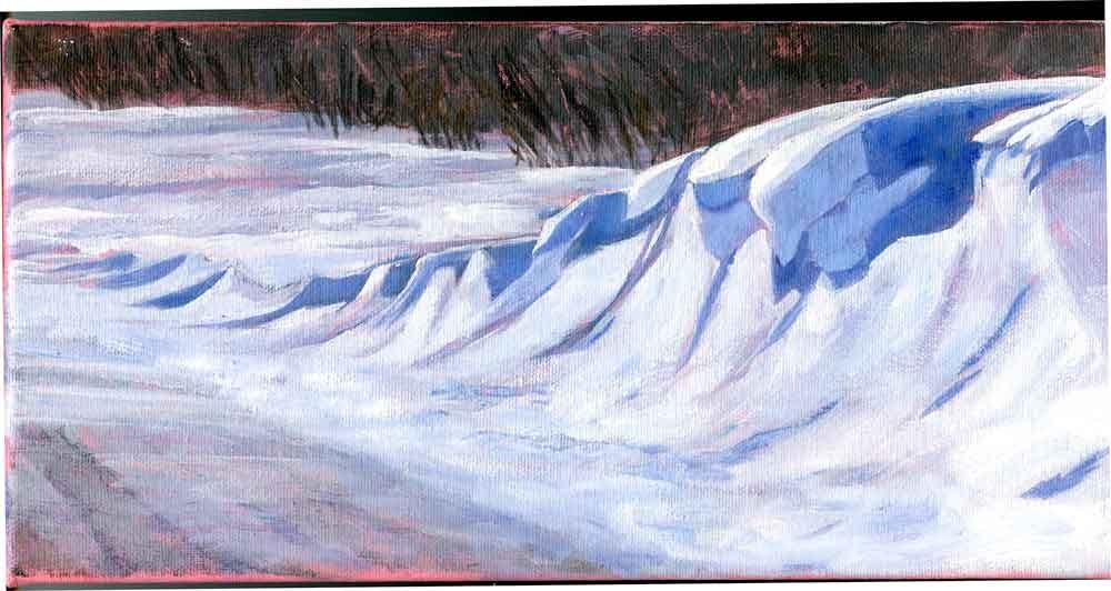 """""""Snowdrift"""" original fine art by Eileen Hennemann"""