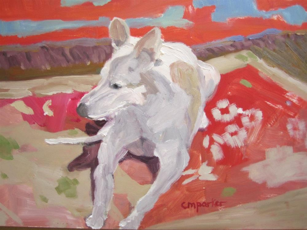 """Dog in Sunlight"" original fine art by Christine Parker"