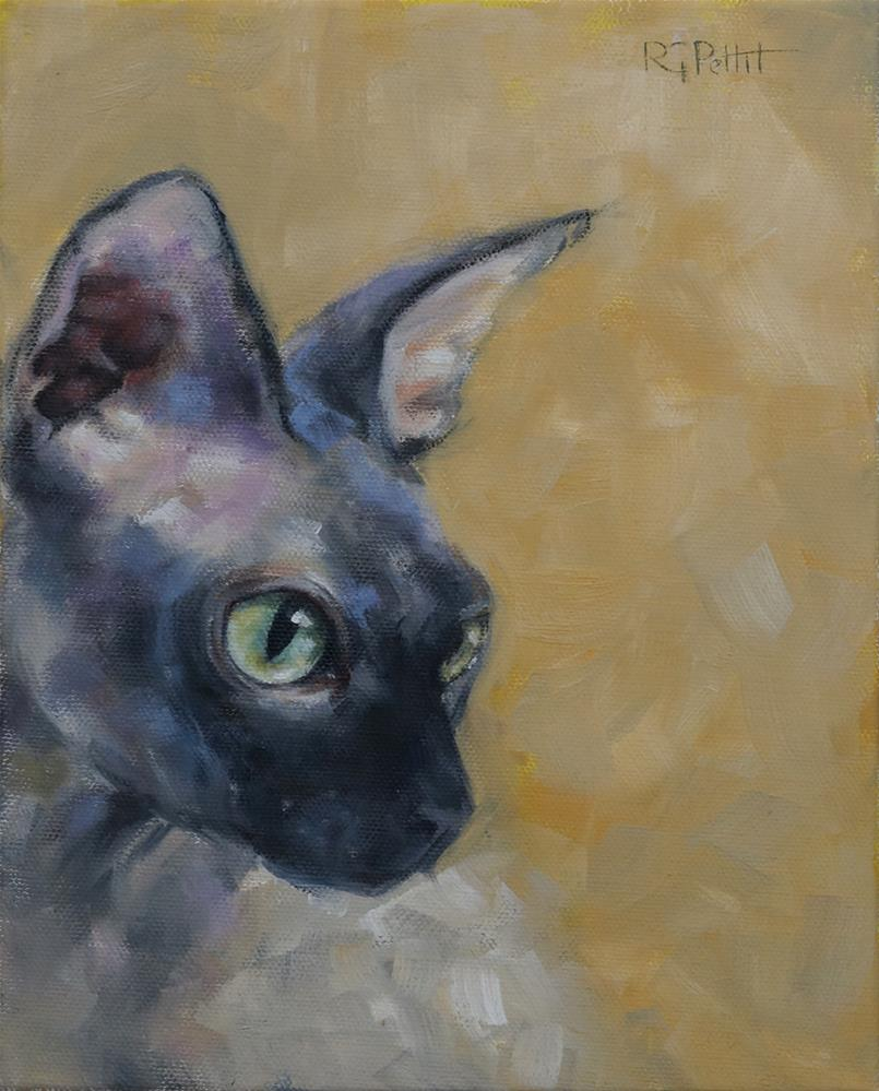 """Cat Study in Gray and Gold"" original fine art by Rhea  Groepper Pettit"