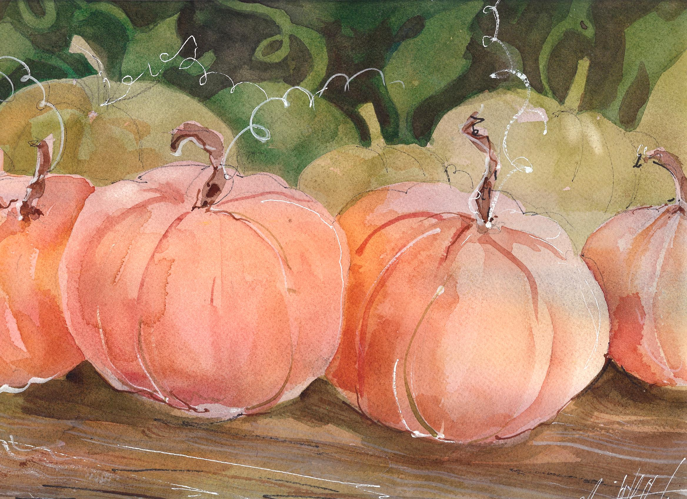 """Punkins"" original fine art by Margie Whittington"