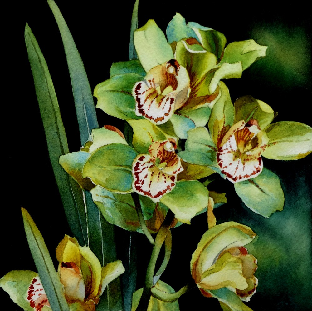 """Green Orchids"" original fine art by Arena Shawn"
