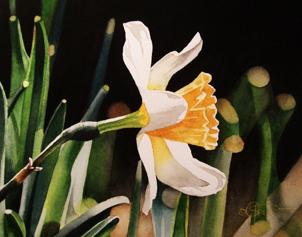 """Spring Flower Week Day 1: Daffodil"" original fine art by Jacqueline Gnott, whs"