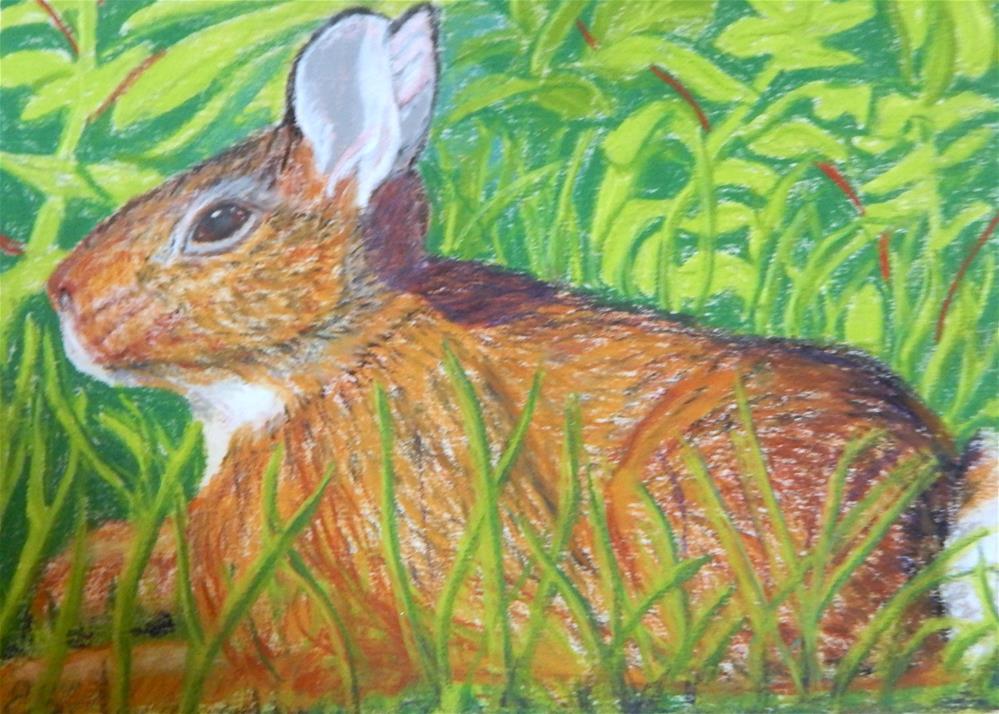 """Wild Rabbit in the Grass"" original fine art by Elaine Shortall"