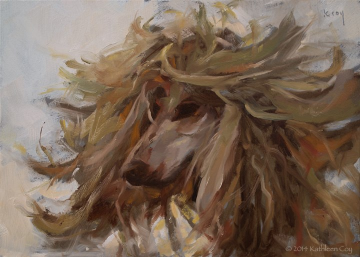 """Day 13 - Afghan Hound"" original fine art by Kathleen Coy"