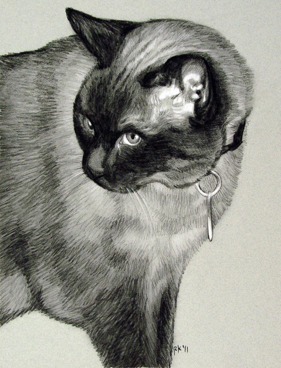"""A Pet Cat Memorial Portrait"" original fine art by Rita Kirkman"