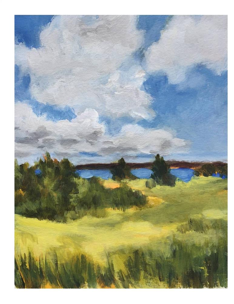 """""""Summer Day in Maine"""" original fine art by Suzanne Woodward"""