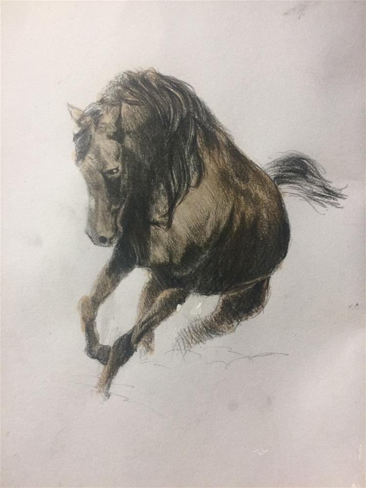 """Horse sketch"" original fine art by Paulo Jimenez"
