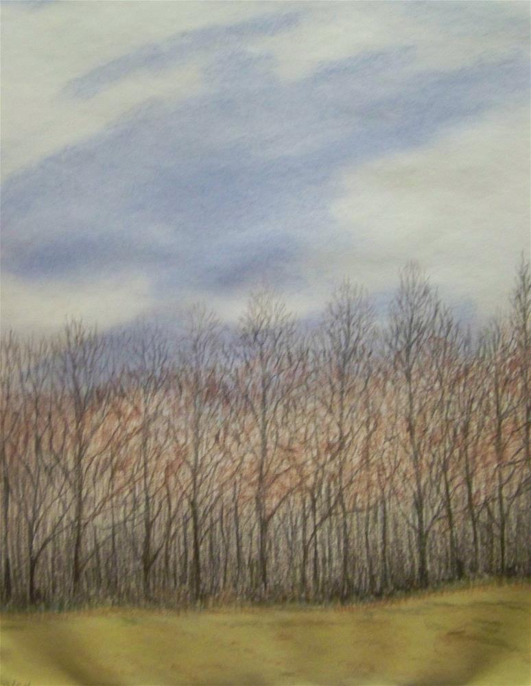 """Winter Treeline"" original fine art by Elaine Shortall"