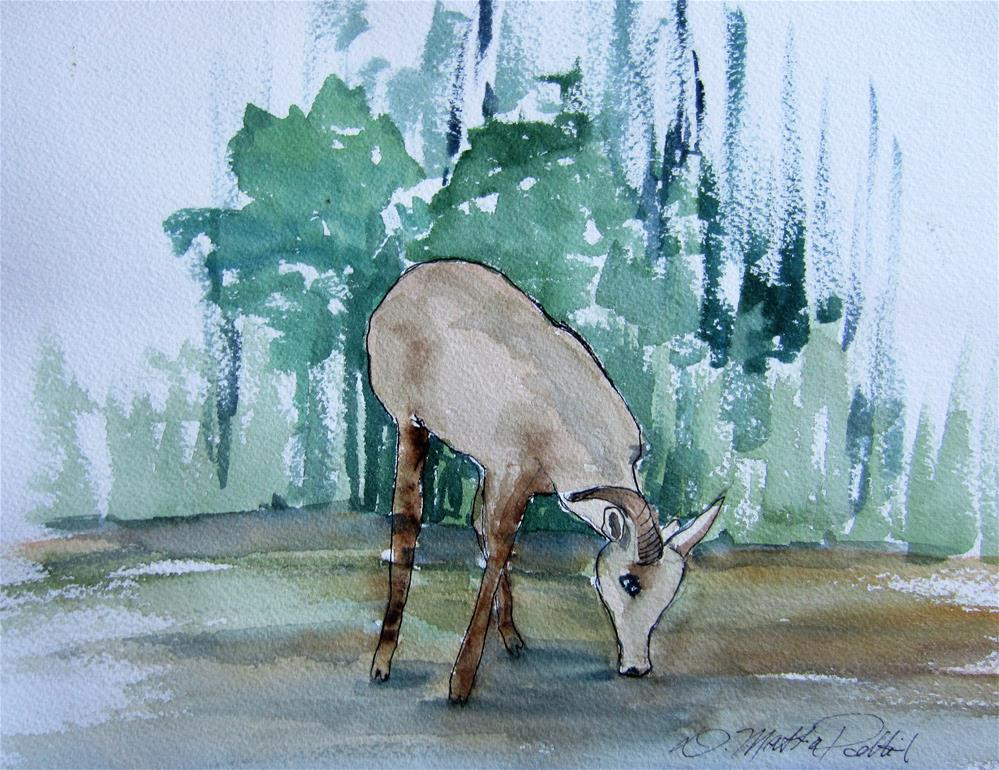 """Mountain Goat"" original fine art by Dolores Pettit"