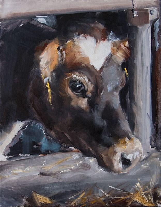 """""""Dubois Cow"""" original fine art by Clair Hartmann"""