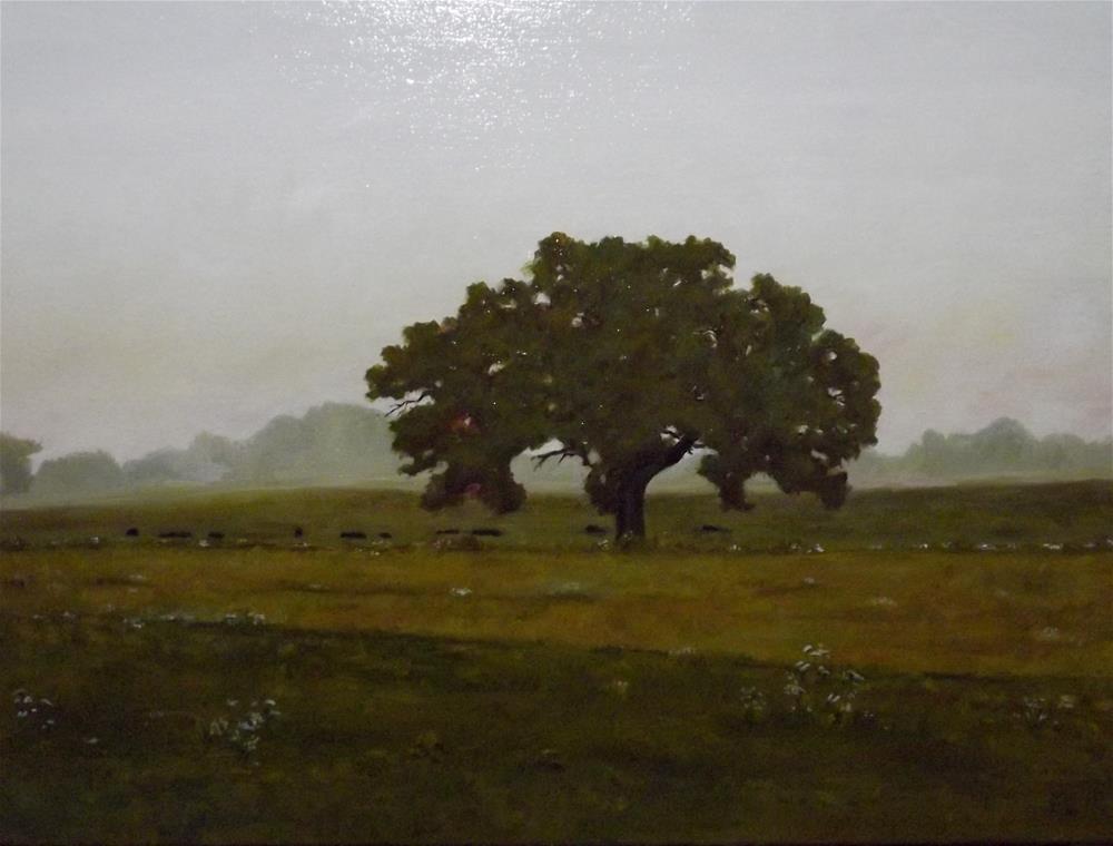 """Morning Mist"" original fine art by Paul Zarza"
