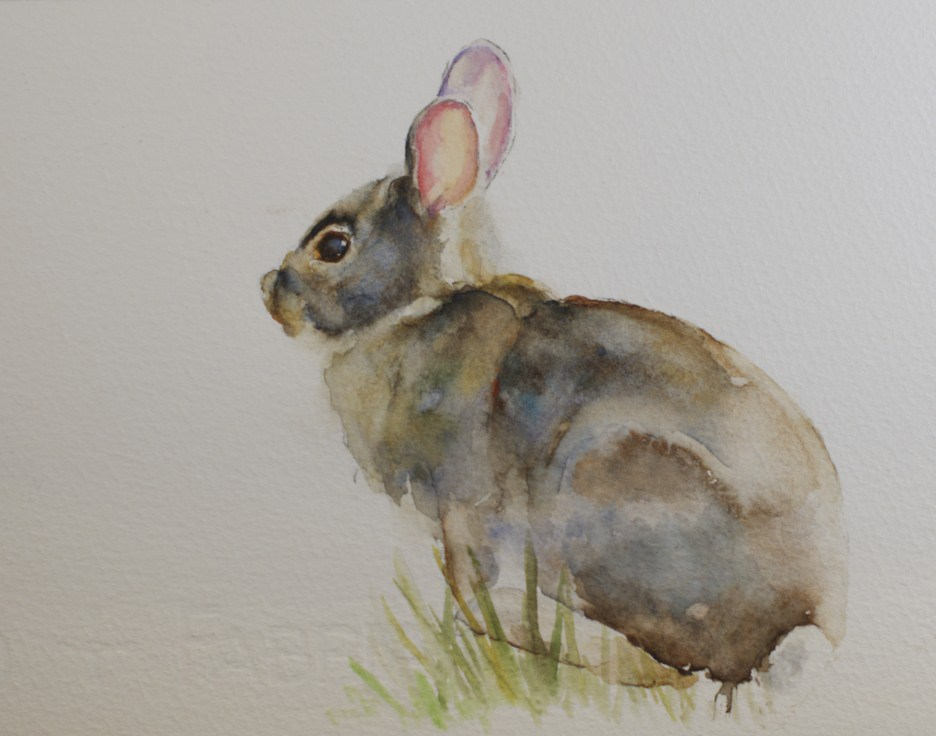 """Backyard Rabbit"" original fine art by Sue Churchgrant"
