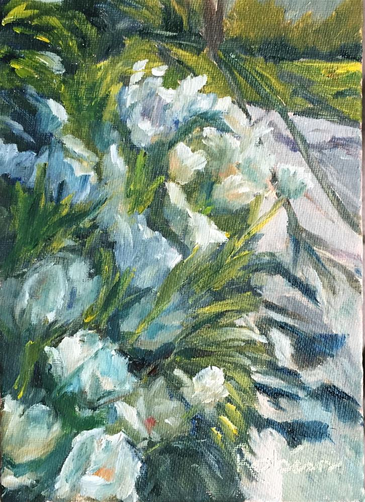"""Tulip Shadows"" original fine art by Renee Robison"