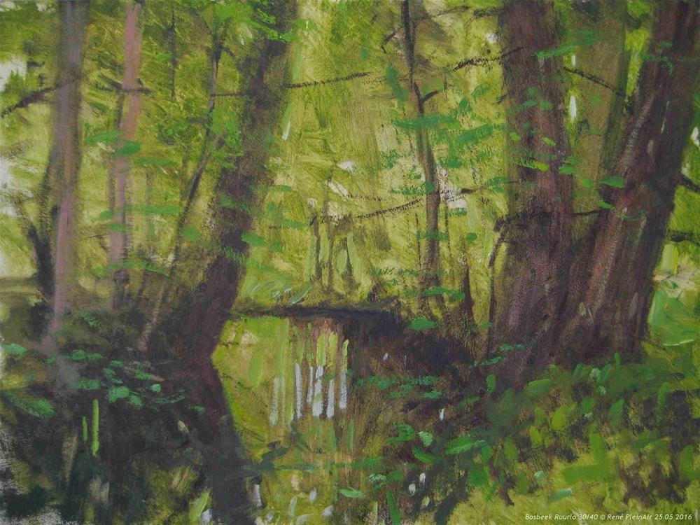 """Bosbeek Ruurlo, The Netherlands"" original fine art by René PleinAir"