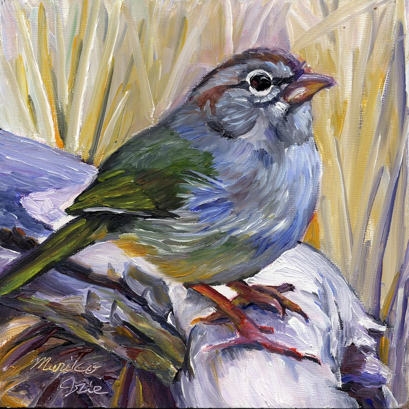 """Olive Sparrow"" original fine art by Mariko Irie"