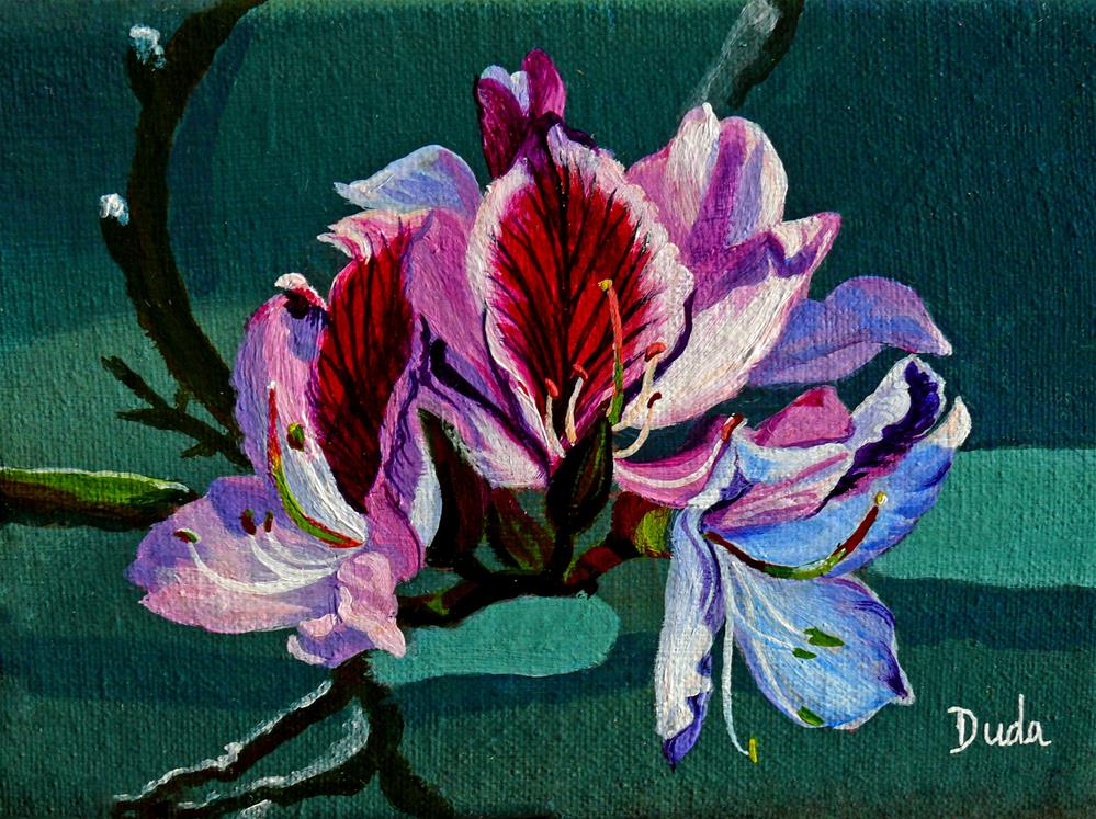 """Bauhinia Beauty"" original fine art by Susan Duda"