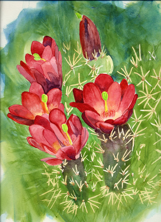 """Red Cacti Flowers"" original fine art by Michelle Wolfe"
