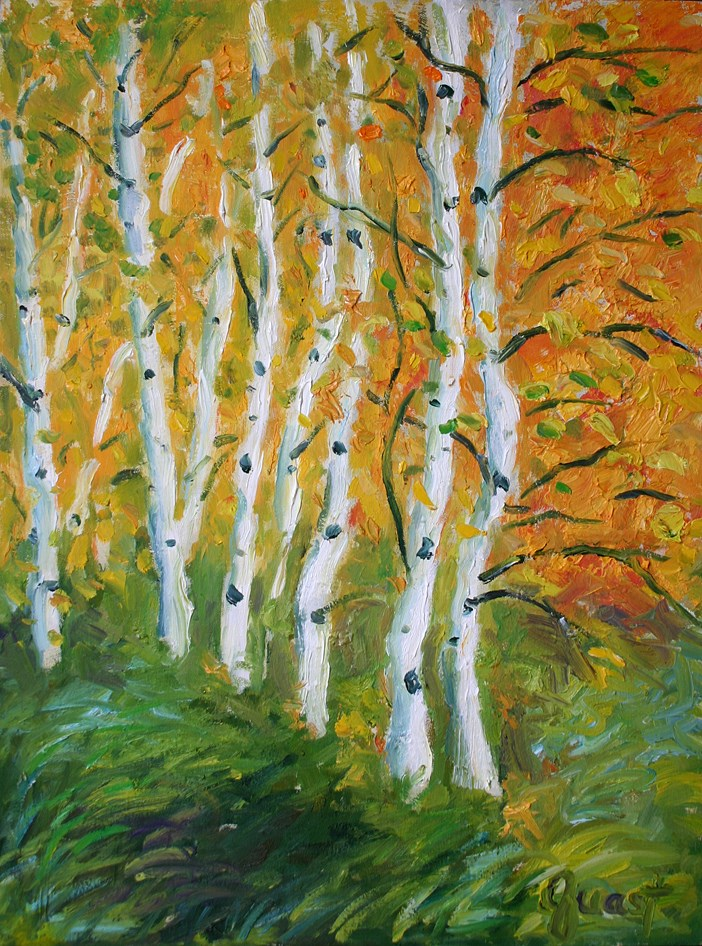 """Birch Trees"" original fine art by barbara quast"