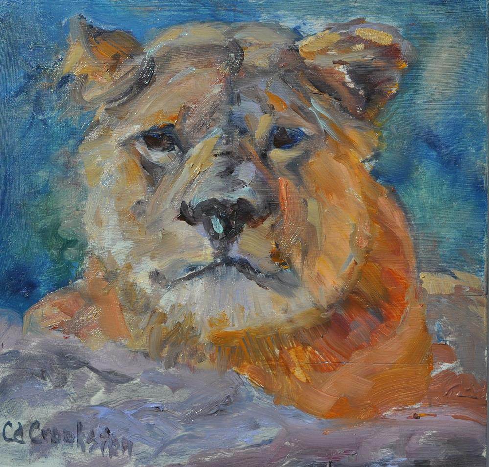 """Miss Lioness"" original fine art by Catherine Crookston"