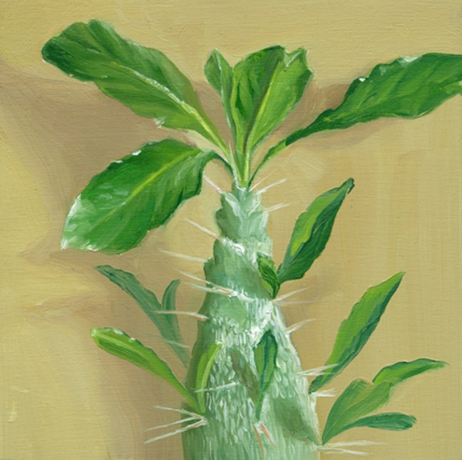 """Cactus"" original fine art by Jean Wilkey"