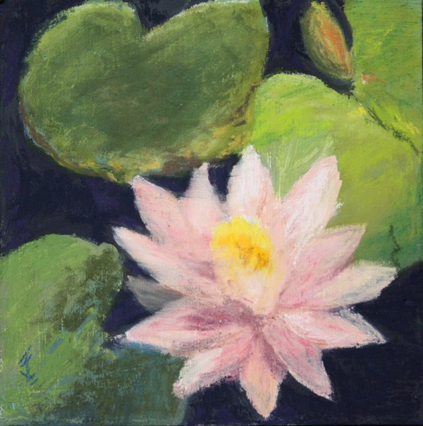 """Pastel Lily"" original fine art by Jane Frederick"
