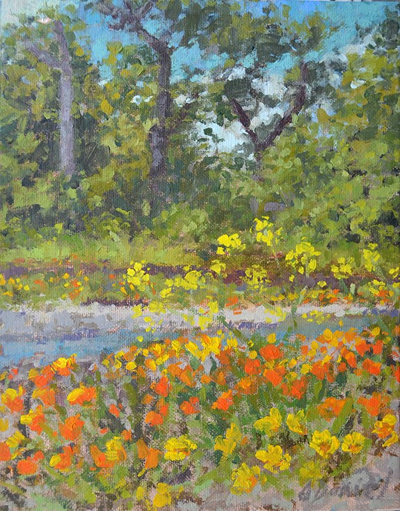 """Mad River Poppies"" original fine art by Andrew Daniel"