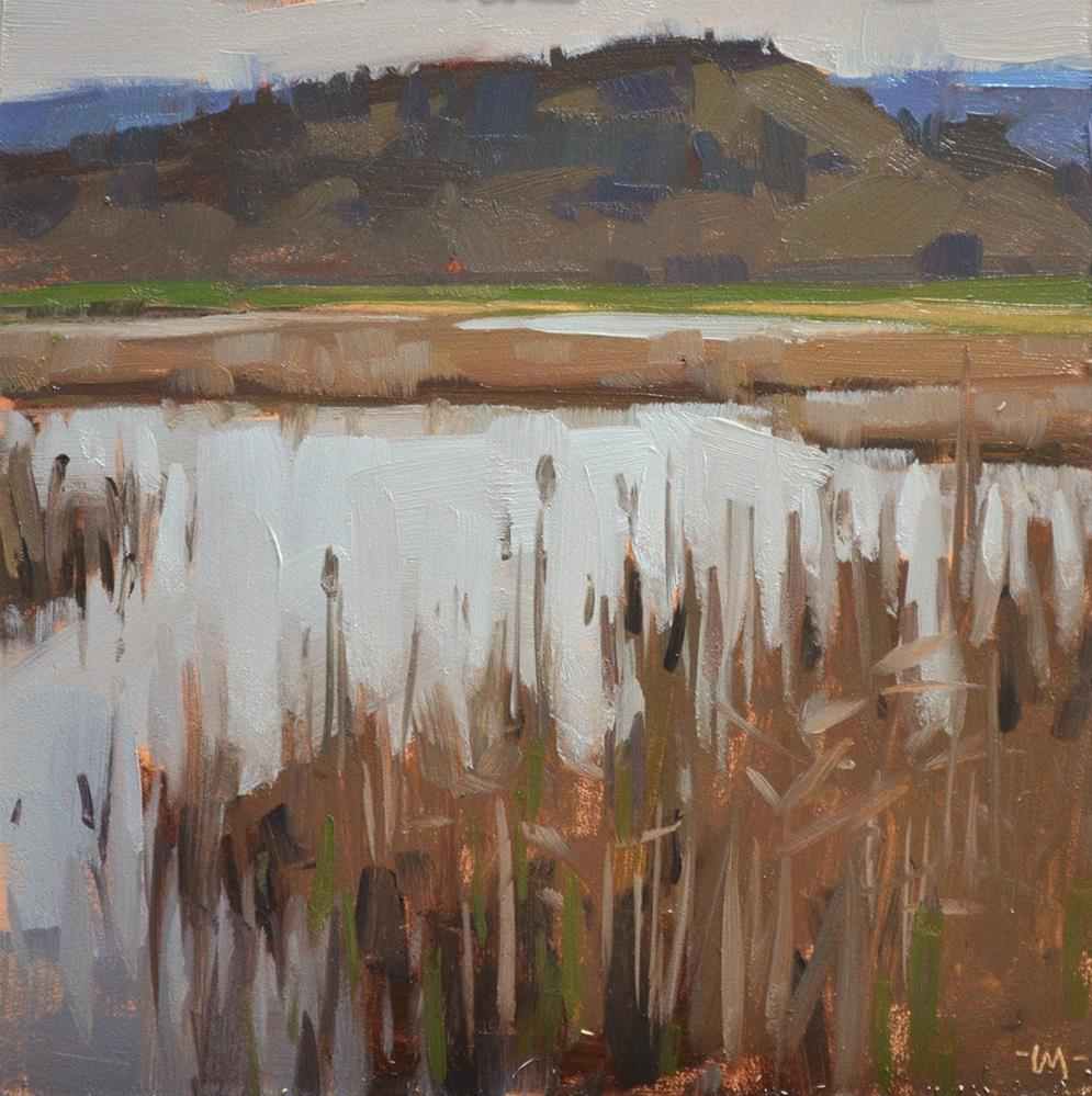 """Oregon Marsh, Early Spring"" original fine art by Carol Marine"