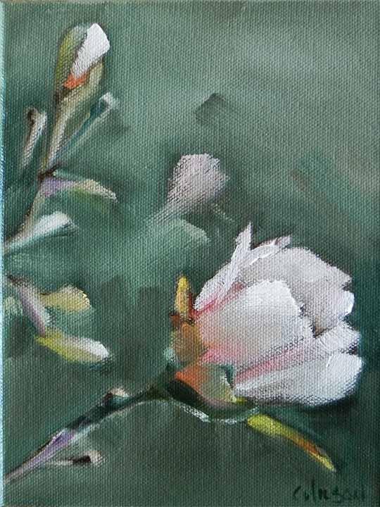 """Stella 2"" original fine art by Cheryl Wilson"