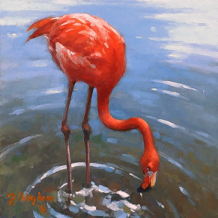 """Flamingo"" original fine art by Joanna Bingham"