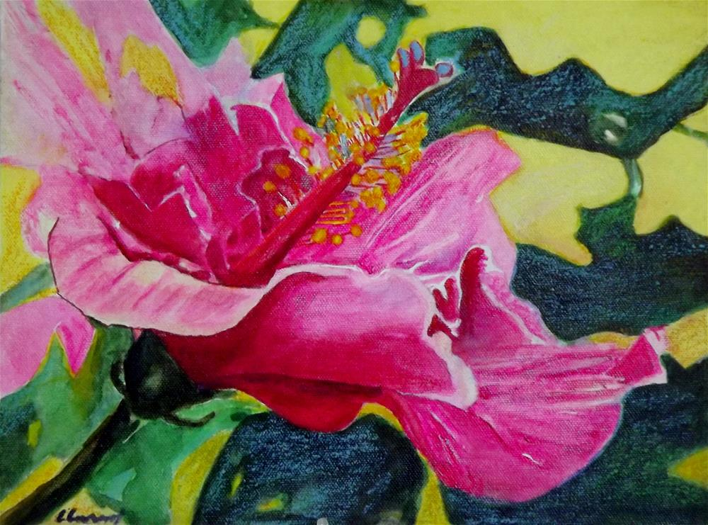 """Hibicus pink girl"" original fine art by Elizabeth Current"