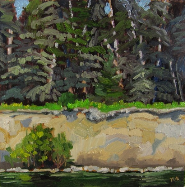 """White Cliffs by Seven Mile Beach, Waskesiu"" original fine art by Nicki Ault"