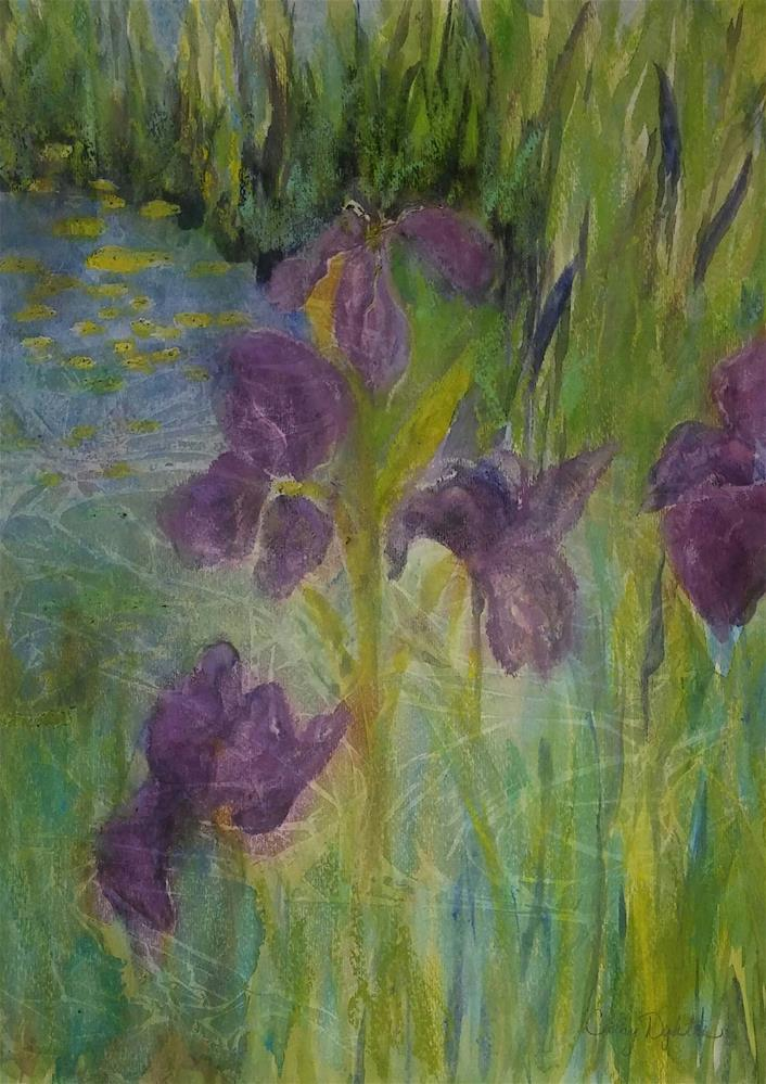 """Iris Pond"" original fine art by Cathy Dykstra"