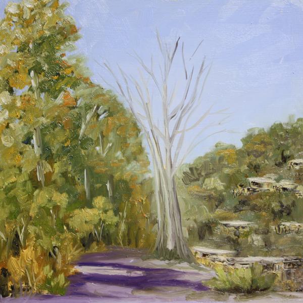 """Dry Creek"" original fine art by Jane Frederick"
