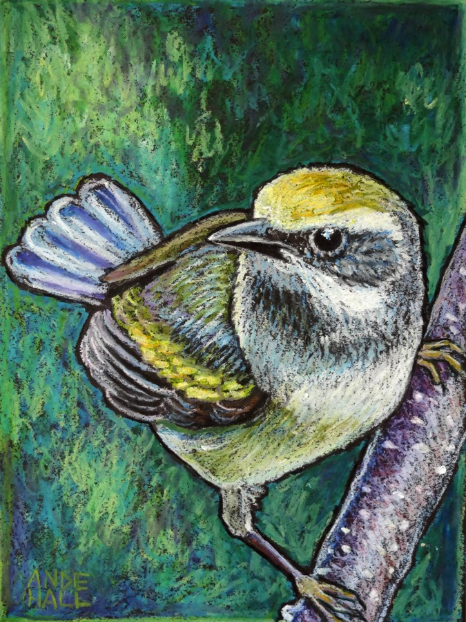"""Golden Winged Warbler"" original fine art by Ande Hall"