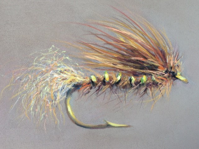 """Tan Caddis Emerger"" original fine art by Cindy Gillett"
