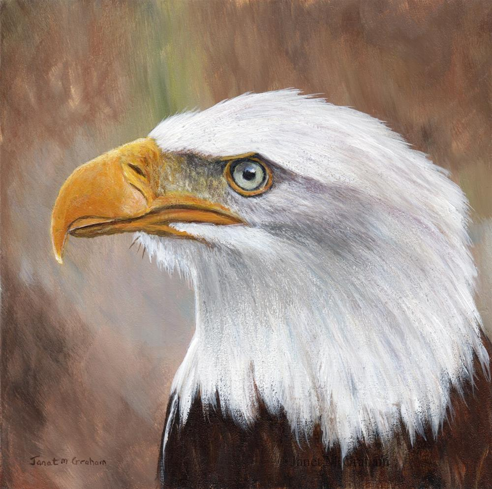 """Bald Eagle No 3"" original fine art by Janet Graham"