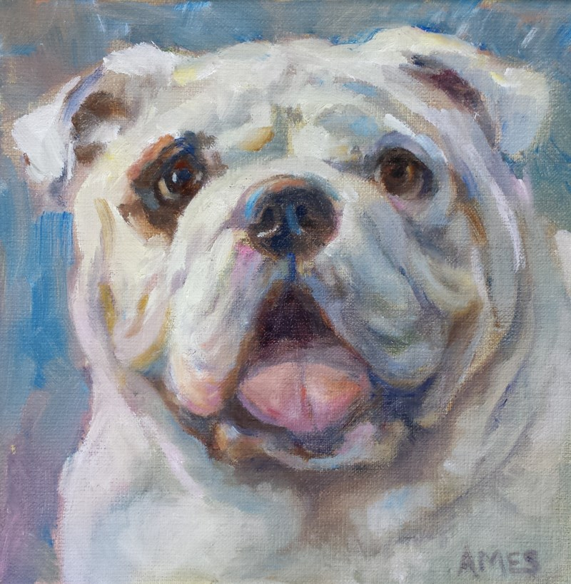 """Oliver"" original fine art by Debra Ames"