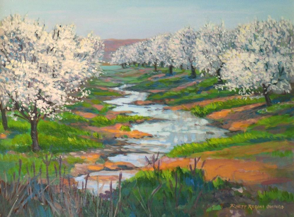 """""""Almond Orchard in Bloom"""" original fine art by Rhett Regina Owings"""