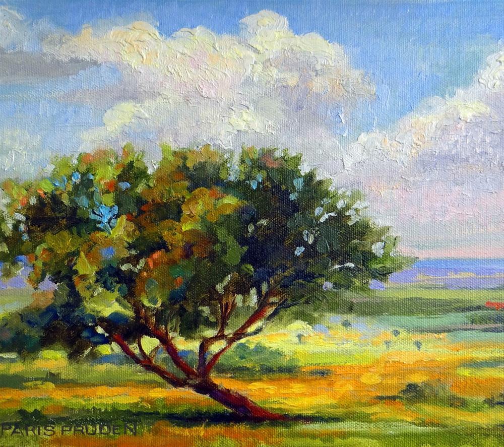 """One Lone Tree"" original fine art by Nancy Paris Pruden"